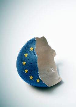 How Brexit burst the Brussels bubble